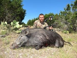 Texas hog hunting wild boar hunts for Texas non resident fishing license