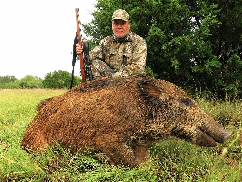 Hog Hunting Tx
